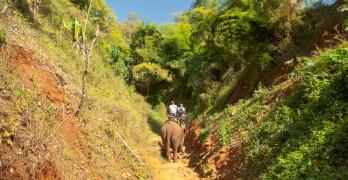 Tag til Umphang Thailand, og oplev verdens bedste trekking.