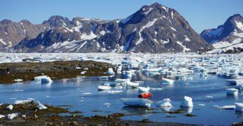 Grønlandsguide: Tre ting man skal prøve på rejsen til Grønland