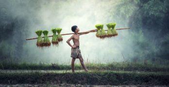 5 seværdigheder der gør Vietnam rejser uforglemmelige