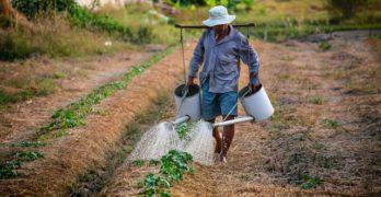 Rundrejser til Vietnam – en kulinarisk oplevelse