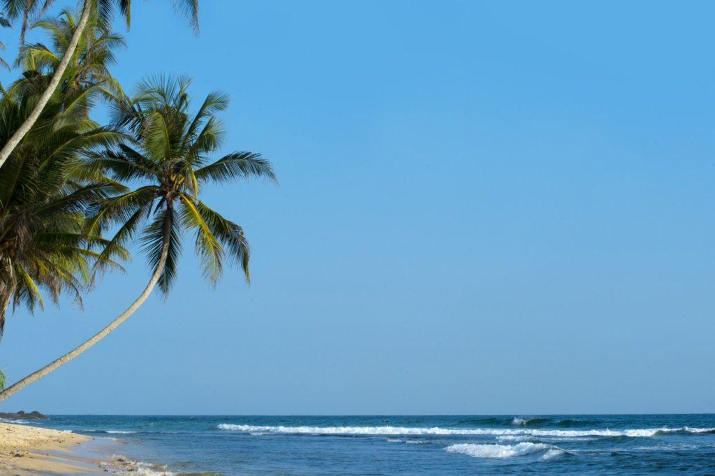 Guide: Sådan planlægger du den rette rundrejse på Sri Lanka