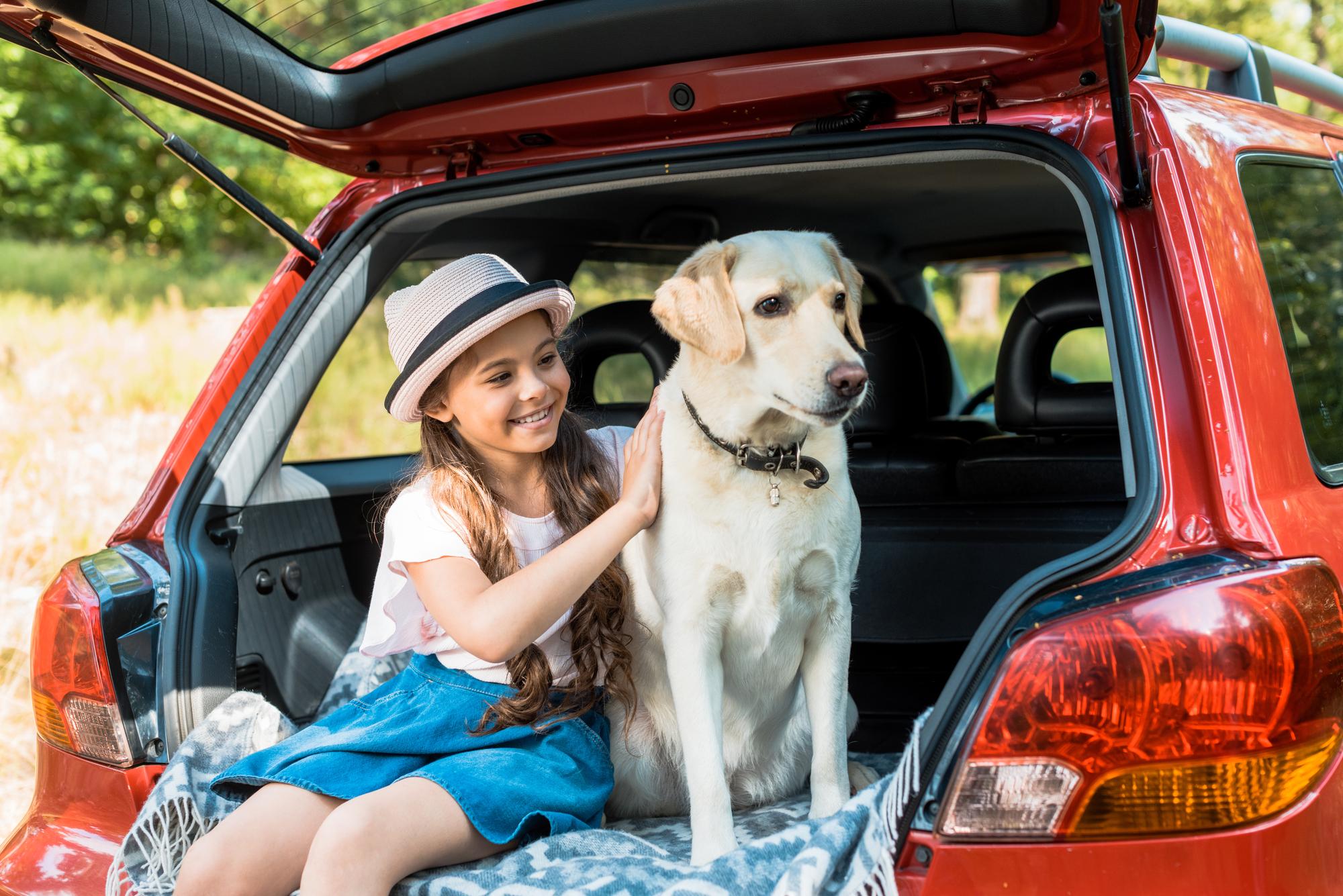 Bilferie med hund